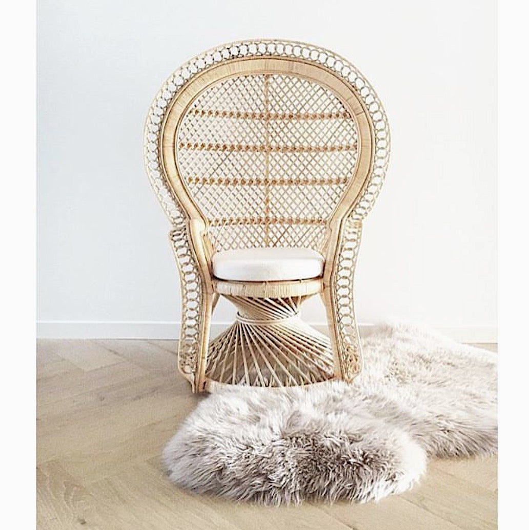 Mini Retro Peacock Chair | Pre-Order November