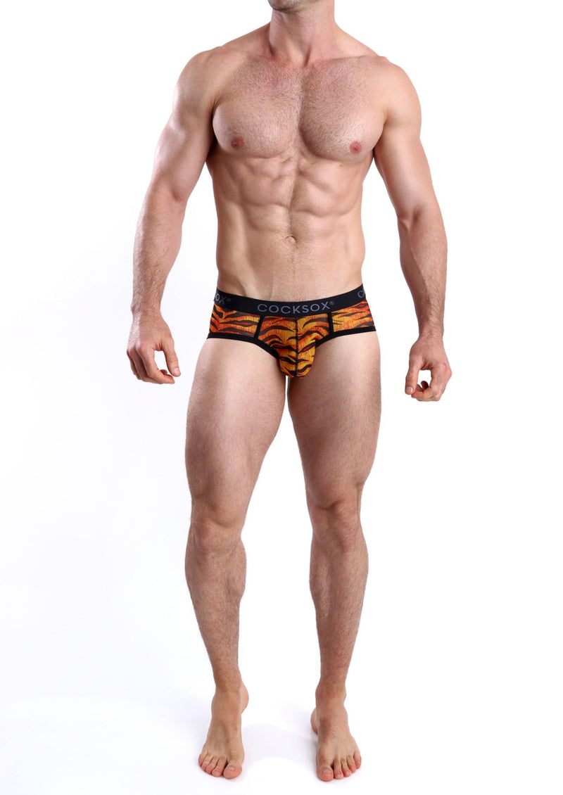 CX76ME Mesh Sports Brief