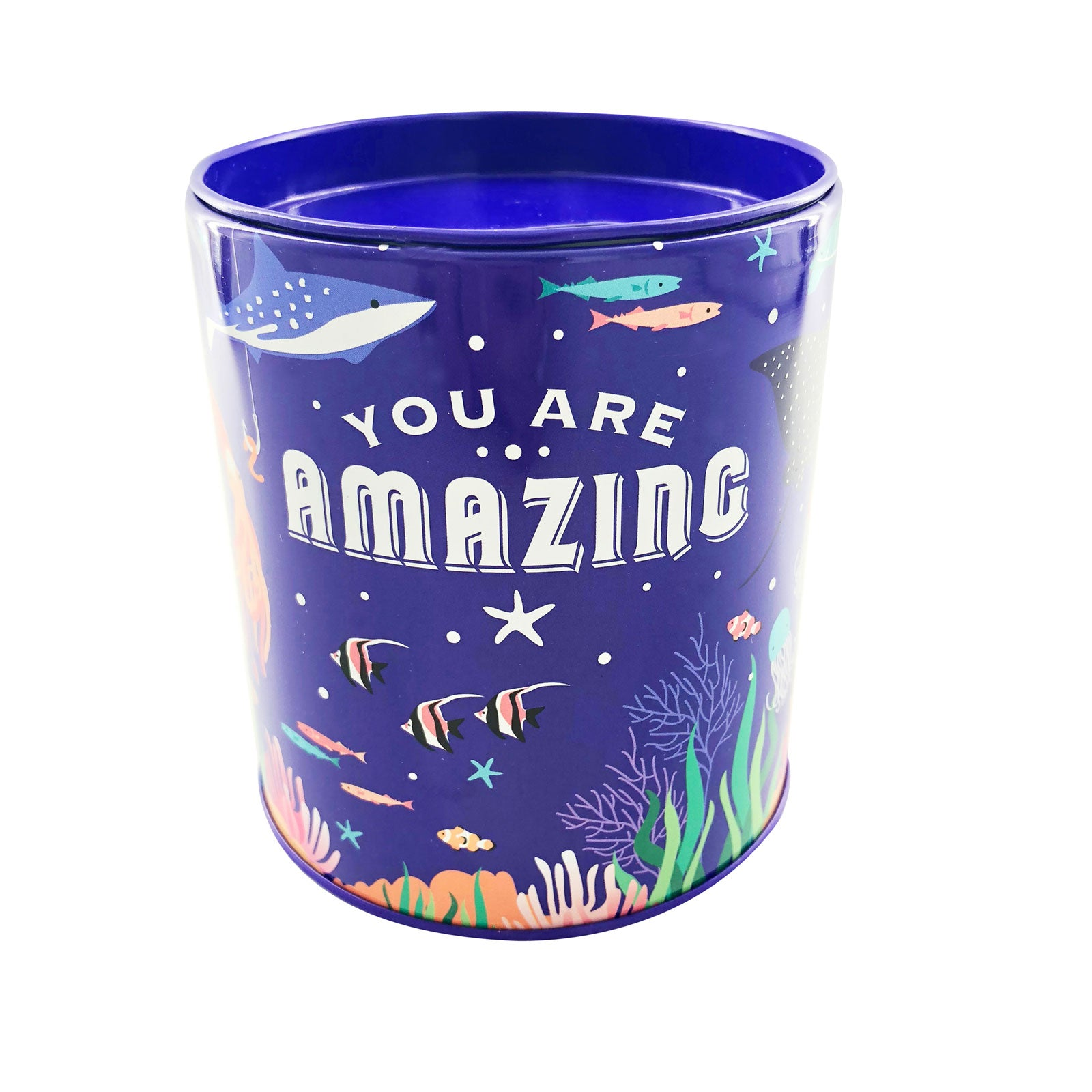 Savings Coin Tins - You Are Amazing Marine