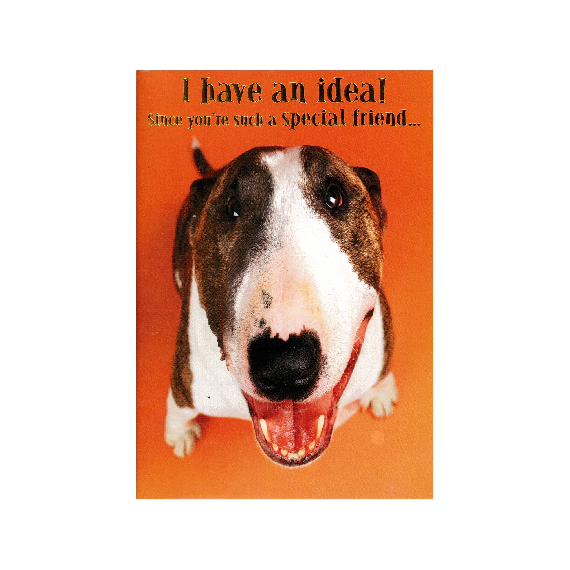 Designer Greetings Card - I have an idea! Dog