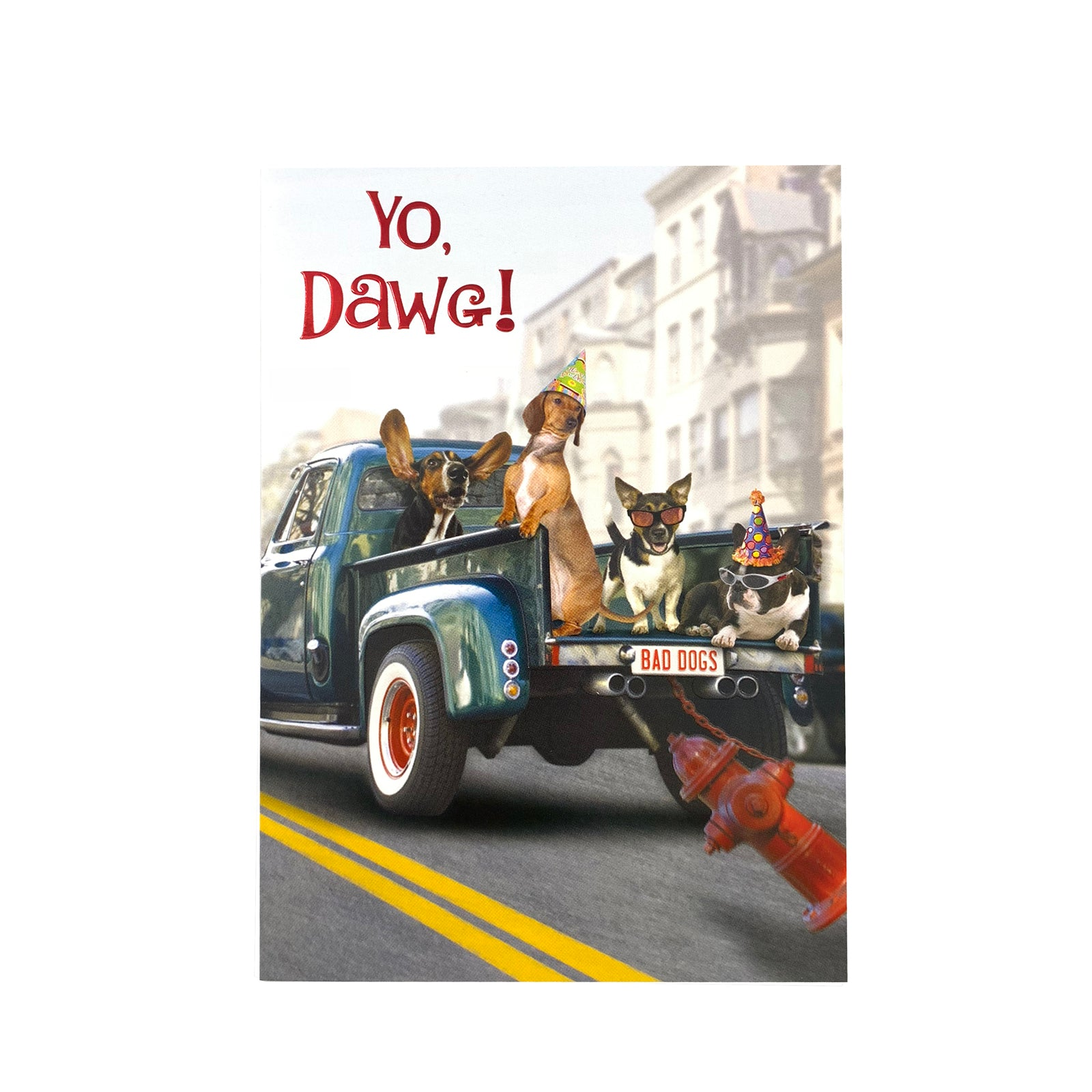 Designer Greetings Birthday Card - Yo Dawg ! Pickup Truck