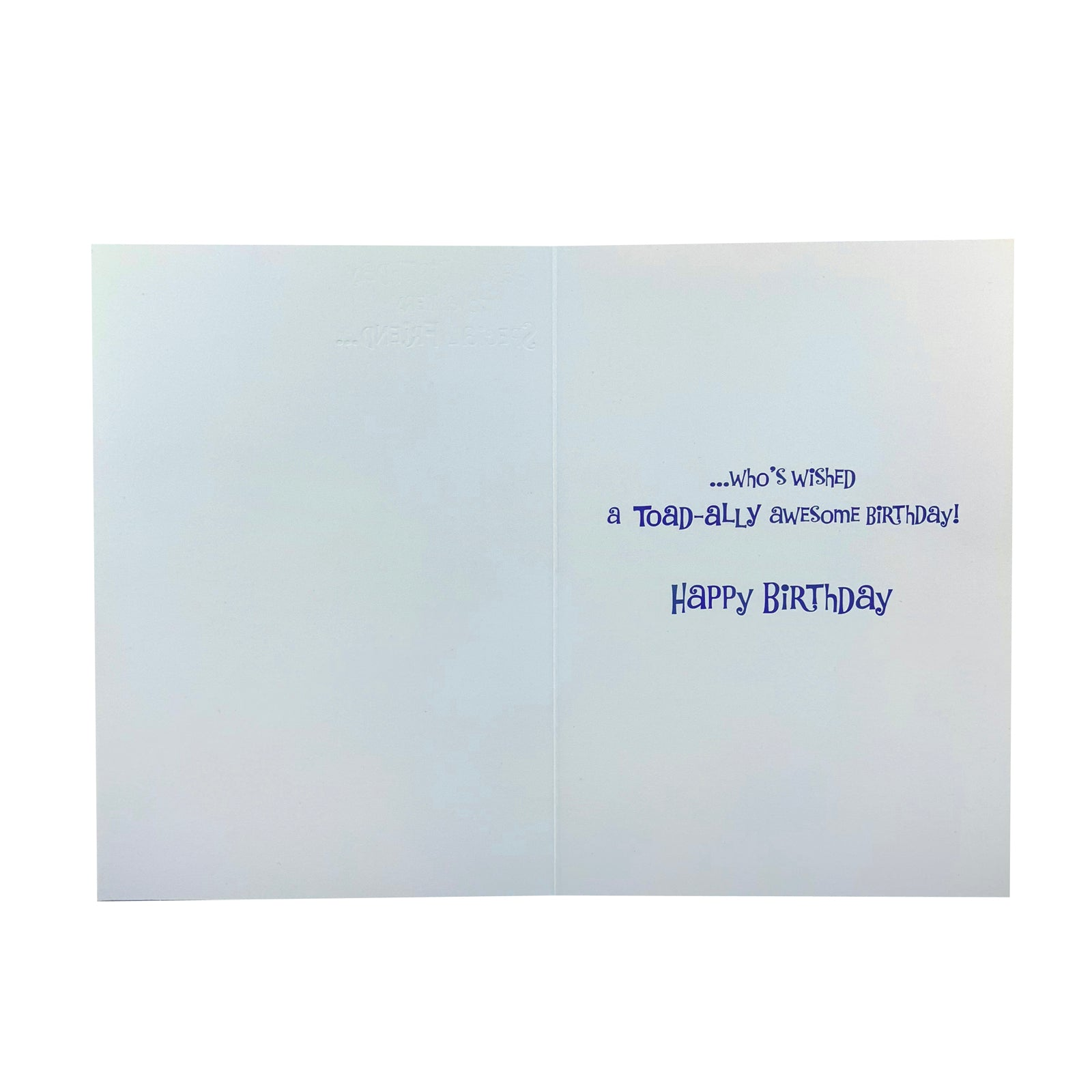 Designer Greetings Birthday Card - Special Friend Frog