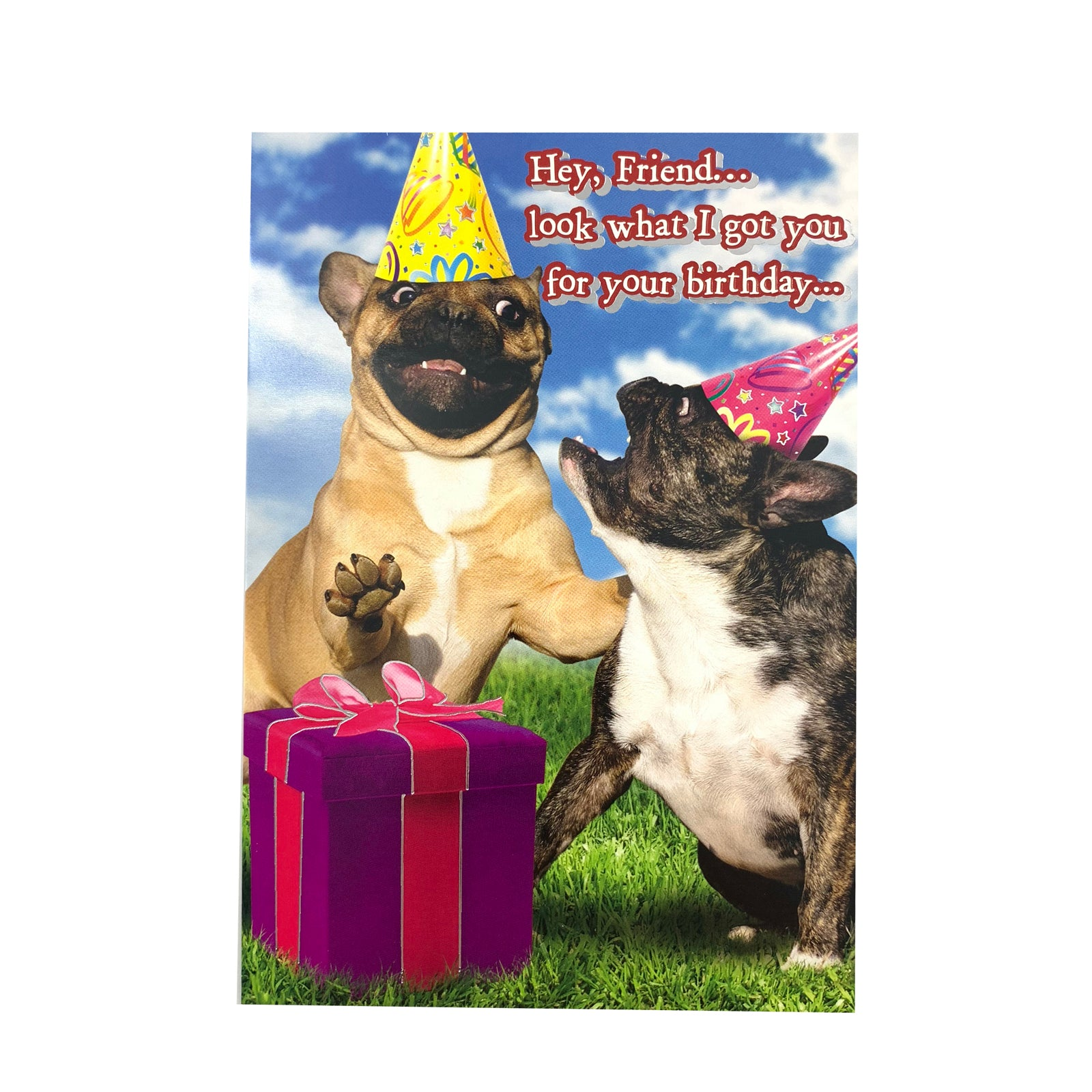 Designer Greetings Birthday Card - Hey Friend Pugs