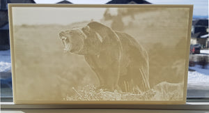 Custom Size Lithophane Print - Please Email for Pricing