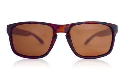Tortoise Brown Polarized Mavericks - Amber Lens