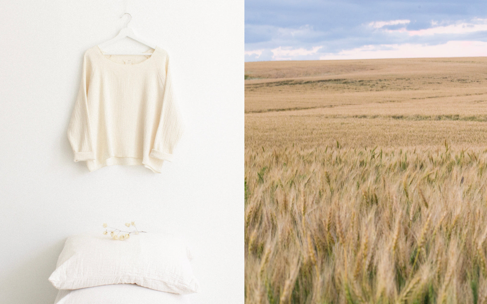 Cream shirt hanging next to a photo of a wheat field.