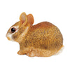 Safari Eastern Cottontail Rabbit Baby - Advice from a Caterpillar