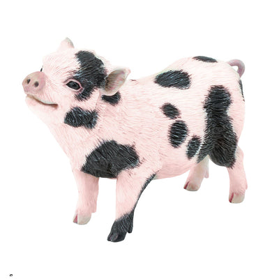 Safari Black And Pink Pot Bellied Pig - Advice from a Caterpillar