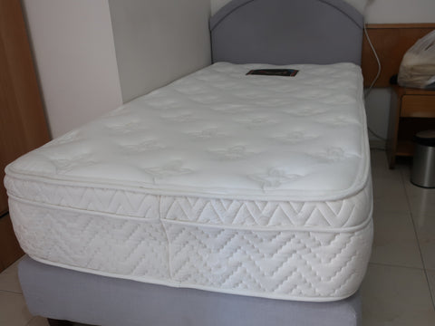 2 beds with mattresses