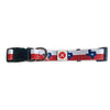 Texas Flag Collar - Medium