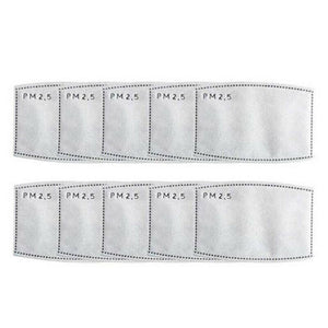 PM2.5 Filter 10 Pack