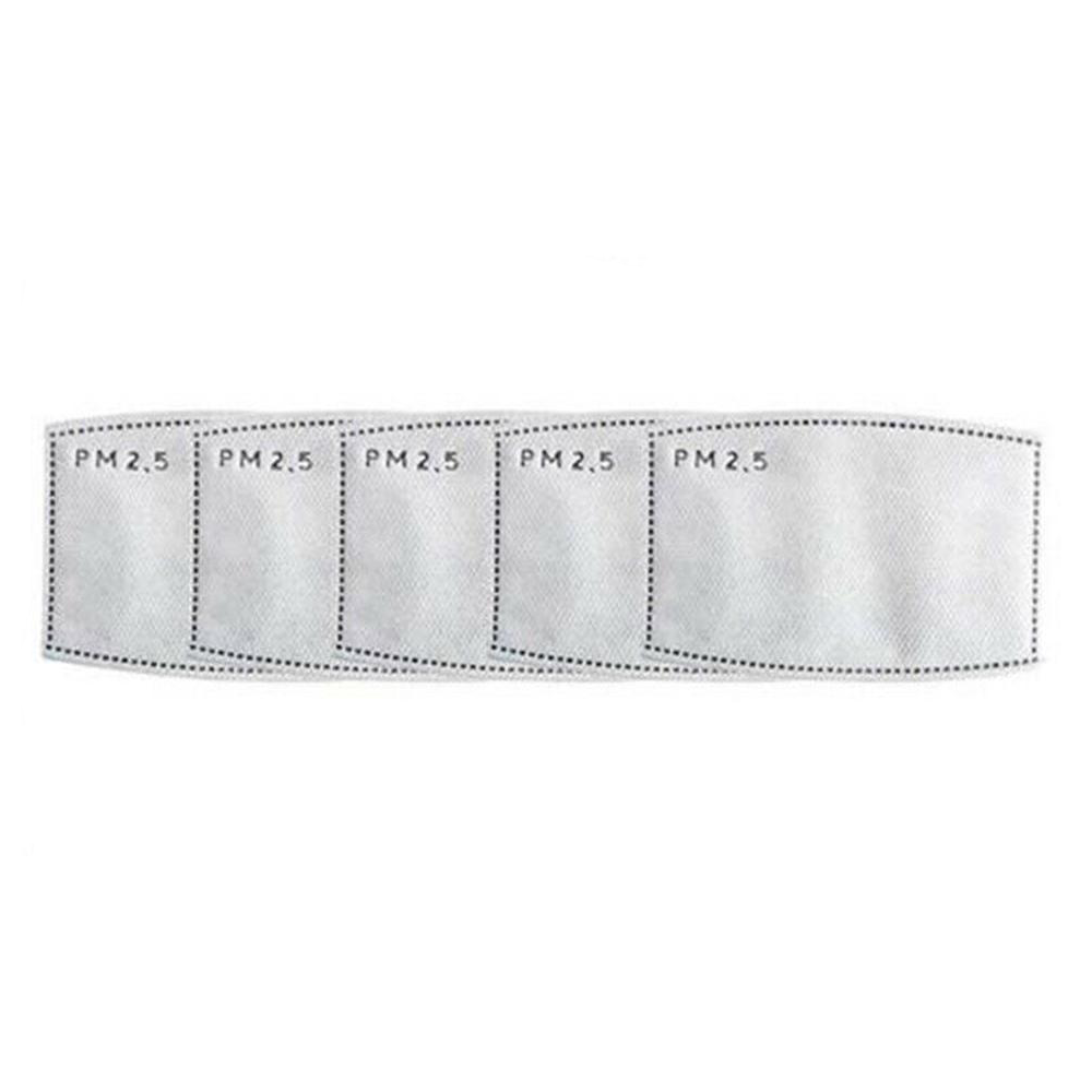 PM2.5 Filter 5 Pack