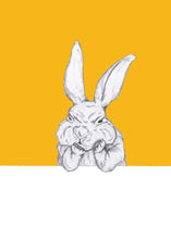 Load image into Gallery viewer, Grumpy Bunny
