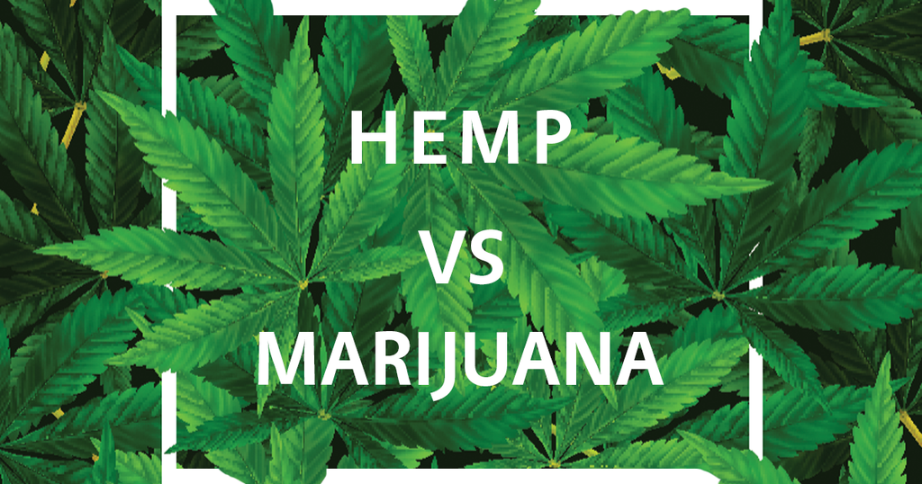 Hemp vs Marijuana - Ruby's Happy Farm CBD Shop