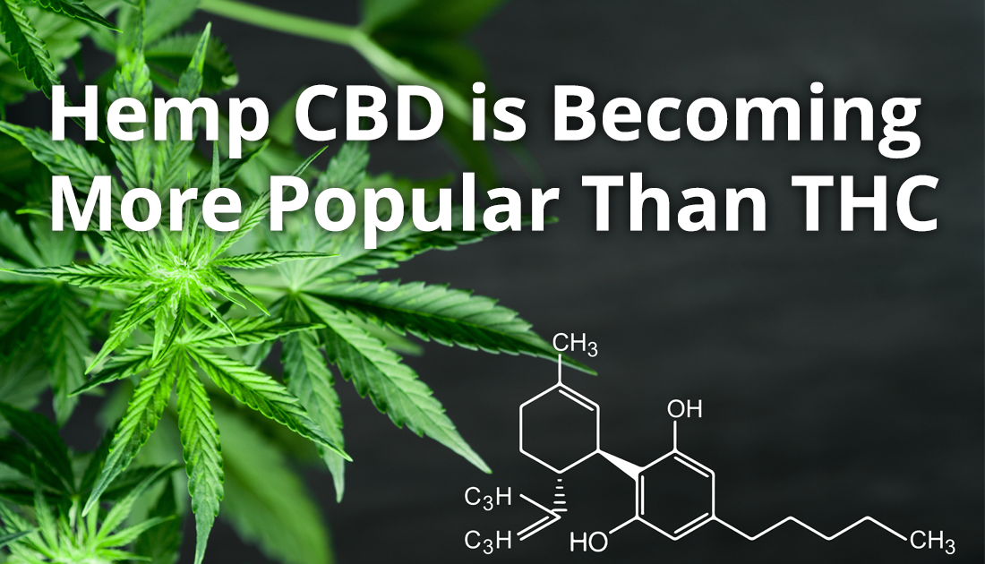 Hemp CBD is Becoming More Popular Than THC