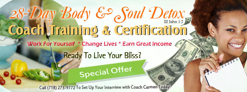 Detox Coach Certification (Balance Payoff Plan)