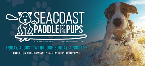 Seacoast paddle for the pups