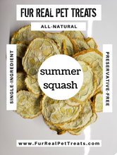 Load image into Gallery viewer, Summer Squash