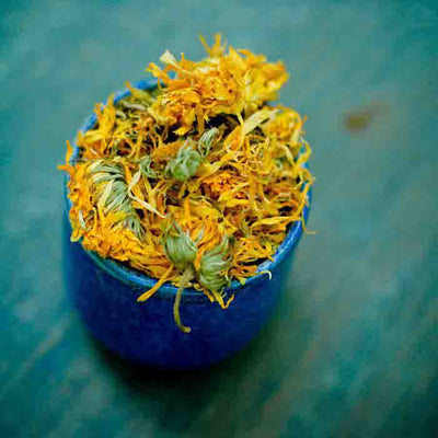 Calendula stuffed into a blue dish with a blurred blue-green background.