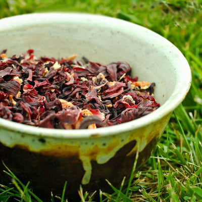 Hibiscus Orange Tea is in a brown and white bowl that has been placed on the grass.