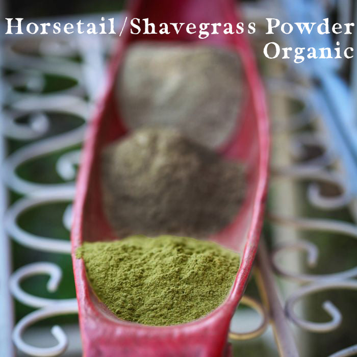 Horsetail / Shavegrass Powder, Organic, 1/2 LB.