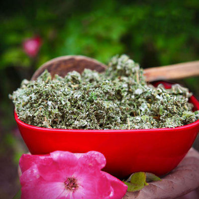 A red bowl of cut and sifted Red Raspberry leaf sits outside with a pink flower as an accent.