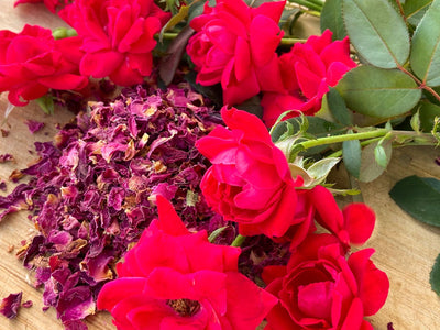 A pile of dried Red Rose Petals on a wooden surface with freshly picked roses next to the petals.