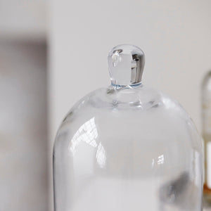 Small Glass Bell Jar Cloche