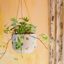 Load image into Gallery viewer, Queen Bee Hanging Planter