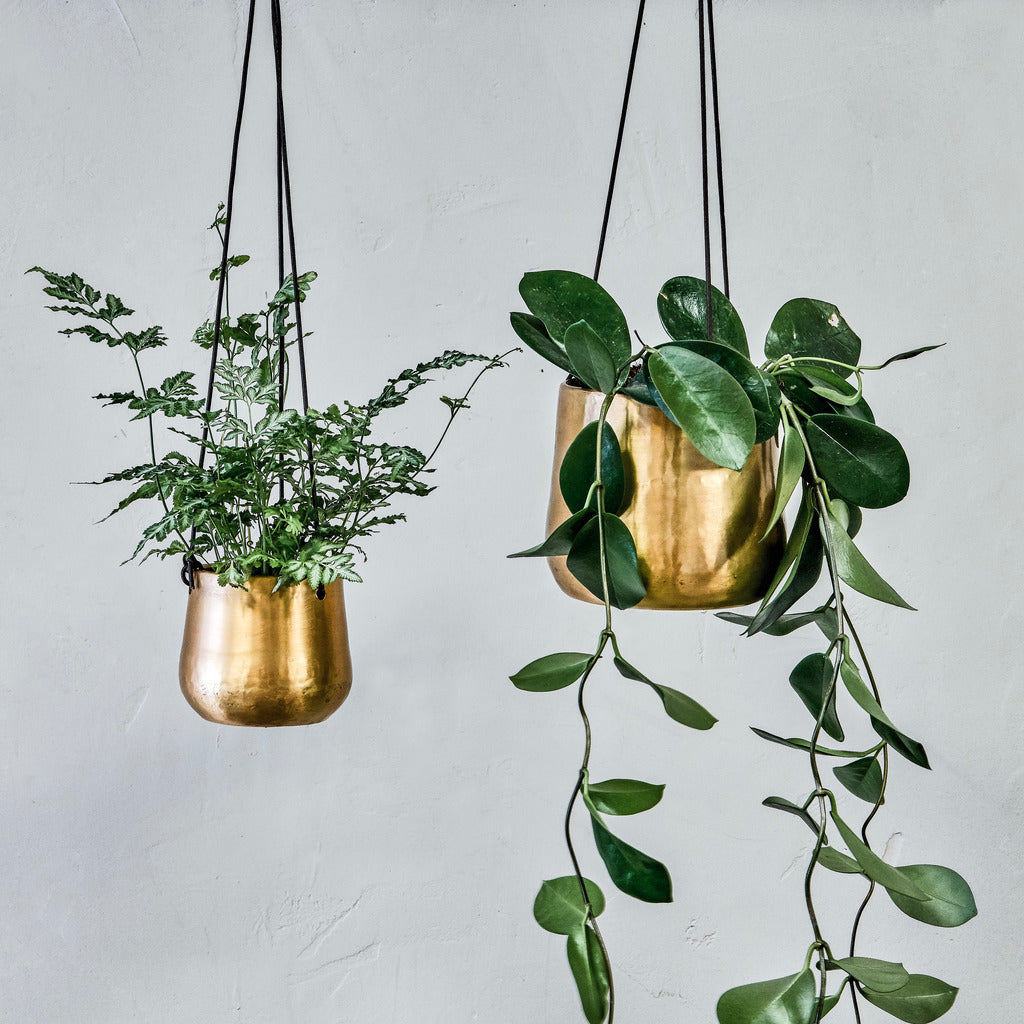 Small Atsu Brass Hanging Planter