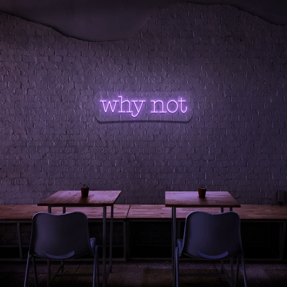 Why Not - Neon Sign