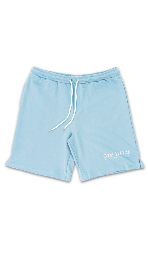 9. V2 TRACK SHORTS - TEAL (NEW IN)