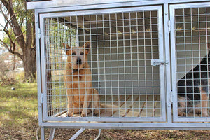 """Aussie Box"" Large Raised Double Dog Kennel"