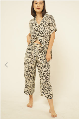 Mappi Rayon Short Sleeves Top in Leopard Print
