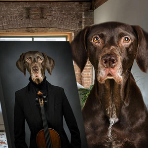 Pet-Musician  // Custom Pet Portrait