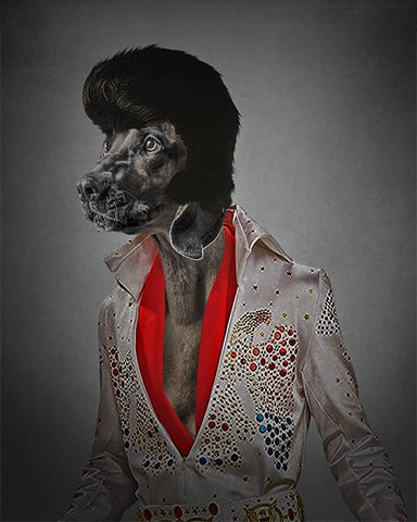 Elvis Presley  dog portrait