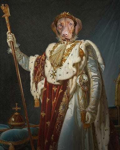 Image of King Pet-Louis XIV // Custom Pet Portrait