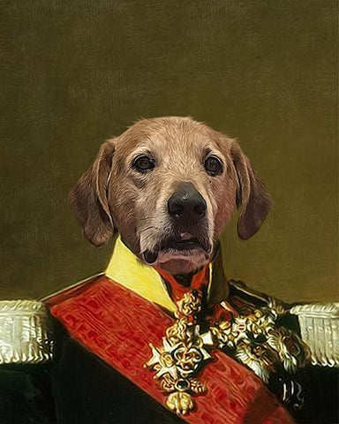 Image of belgian royal dog canvas art
