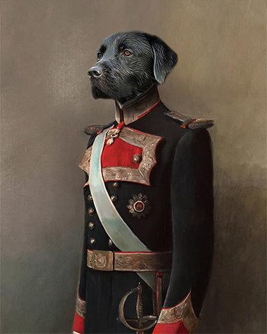 Image of Dom Felipe dog portrait