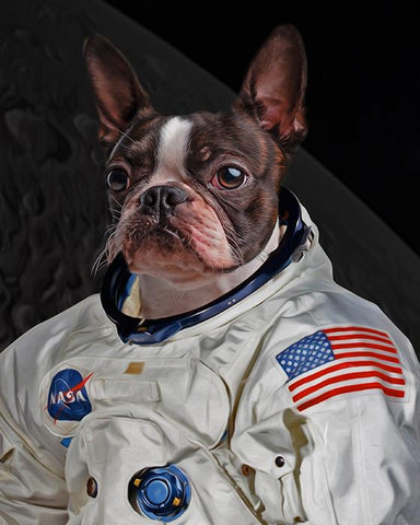 Image of astronaut dog art
