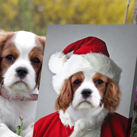 Image of Santa-Pet-Claus // Custom Pet Portrait