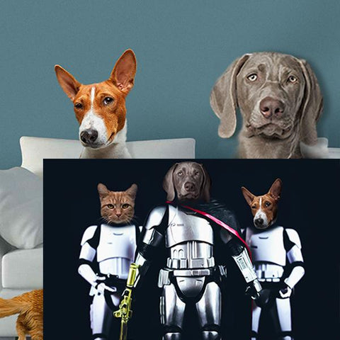 pet dog starwars art