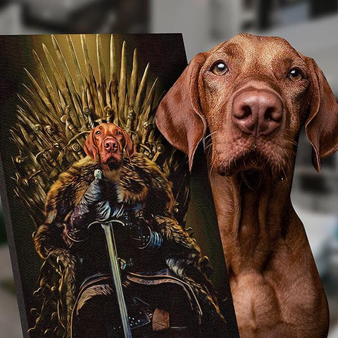 Image of Jon Snow dog portrait