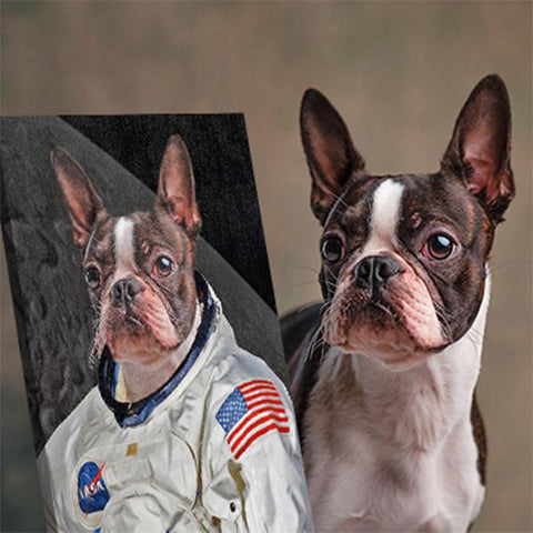 Image of Astronaut Dog portrait