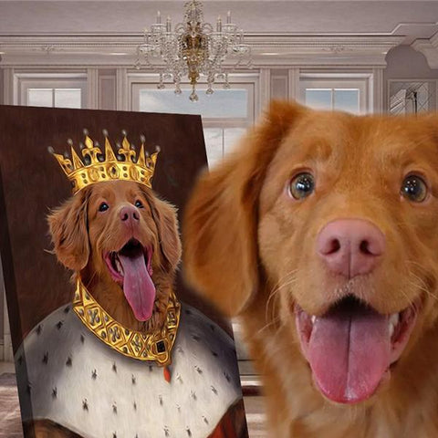 Image of king dog portrait