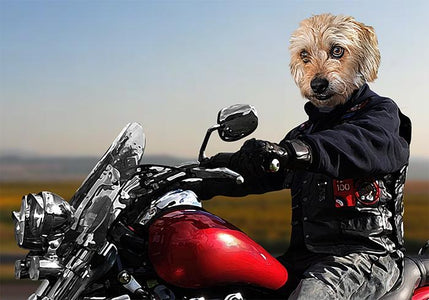 Biker custom pet portraits