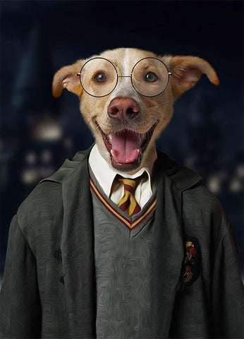 Image of harry potter dog portrait