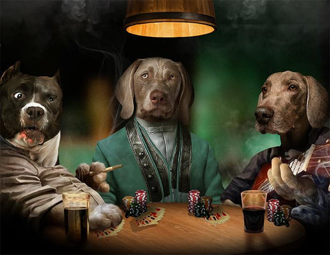 Image of pet casino play art
