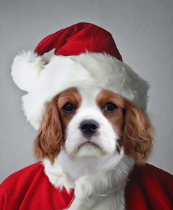 Santa-Pet-Claus // Custom Pet Portrait