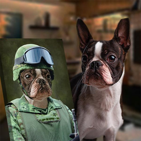 Soldier-Pet // Custom Pet Portrait